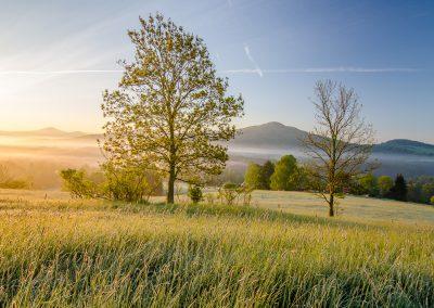 Cesko-Saske-Svycarsko-fotografie_Bacovsky-15