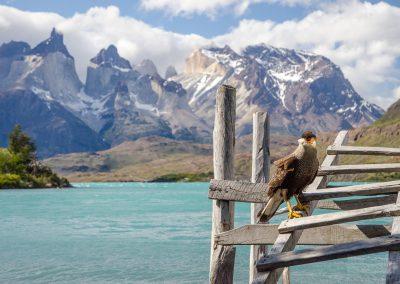 Chile-krajina-Bacovsky-13-2