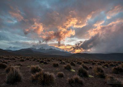 Chile-krajina-Bacovsky-22