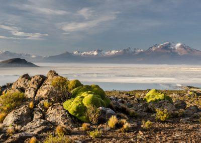 Chile-krajina-Bacovsky-23