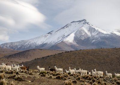 Chile-krajina-Bacovsky-25