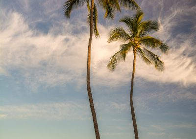 Havajske-ostrovy-Havaj-krajina-Bacovsky-16
