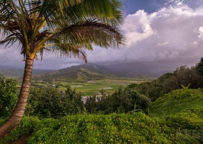 Havajske-ostrovy-Havaj-krajina-Bacovsky-25