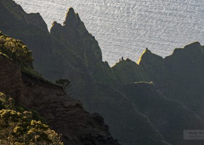Havajske-ostrovy-Havaj-krajina-Bacovsky-4