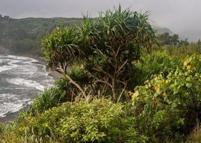 Havajske-ostrovy-Havaj-krajina-Bacovsky-59