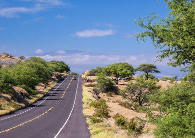 Havajske-ostrovy-Havaj-krajina-Bacovsky-60