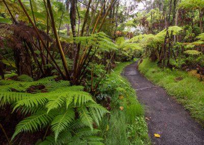 Havajske-ostrovy-Havaj-krajina-Bacovsky-69