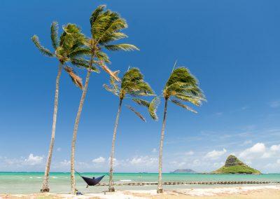 Havajske-ostrovy-Havaj-krajina-Bacovsky-81