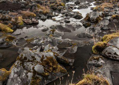 Island-krajina-Bacovsky-14