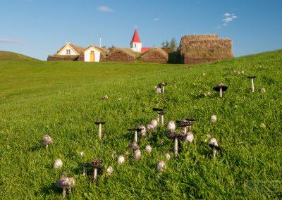 Island-krajina-Bacovsky-44