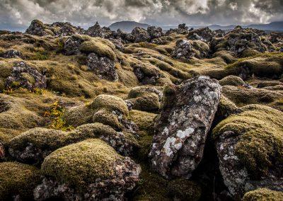 Island-krajina-Bacovsky-56