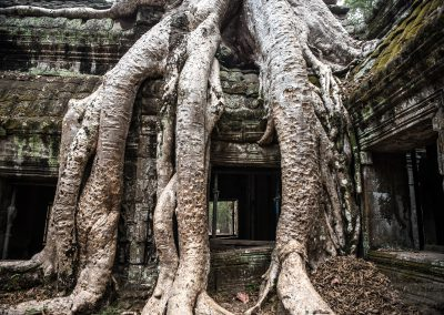 Kambodza-krajina-Bacovsky-17