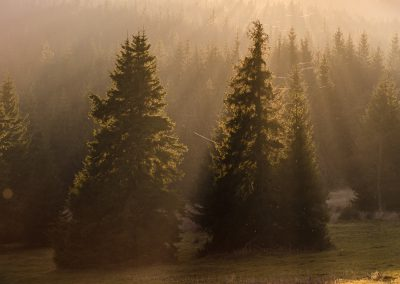 Krkonose-Jizerky-fotografie_Bacovsky-10