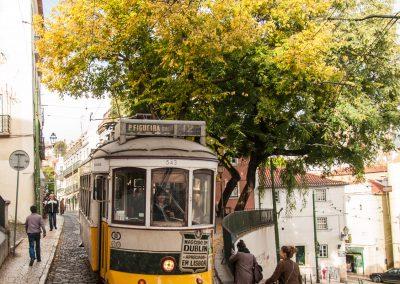 Lisabon_141121_159-2