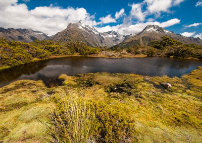 Novy-Zeland-krajina-Bacovsky-31