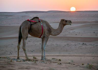 Oman-krajina-lide-Bacovsky-35