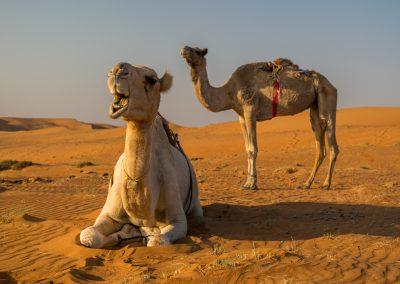 Oman-krajina-lide-Bacovsky-41