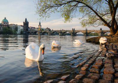 Praha_150420_115