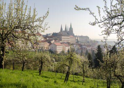 Praha_150420_167