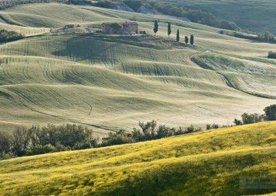 Toskansko-krajina-Bacovsky-13