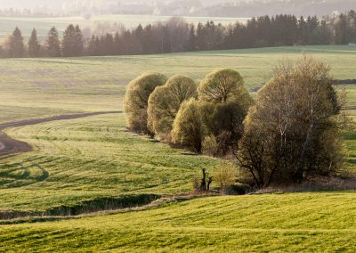 Vysocina-fotogalerie-Bacovsky-4