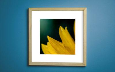 Výroba foto-obrazu do interiéru: zvládnu to sám a za kolik?